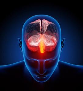 stressed brain activity