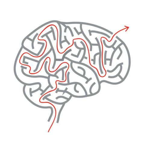 thinking brain