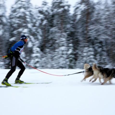 Skiing in Russia.
