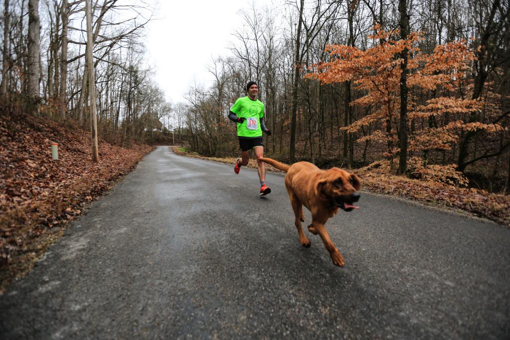 Elkmont Half-Marathon