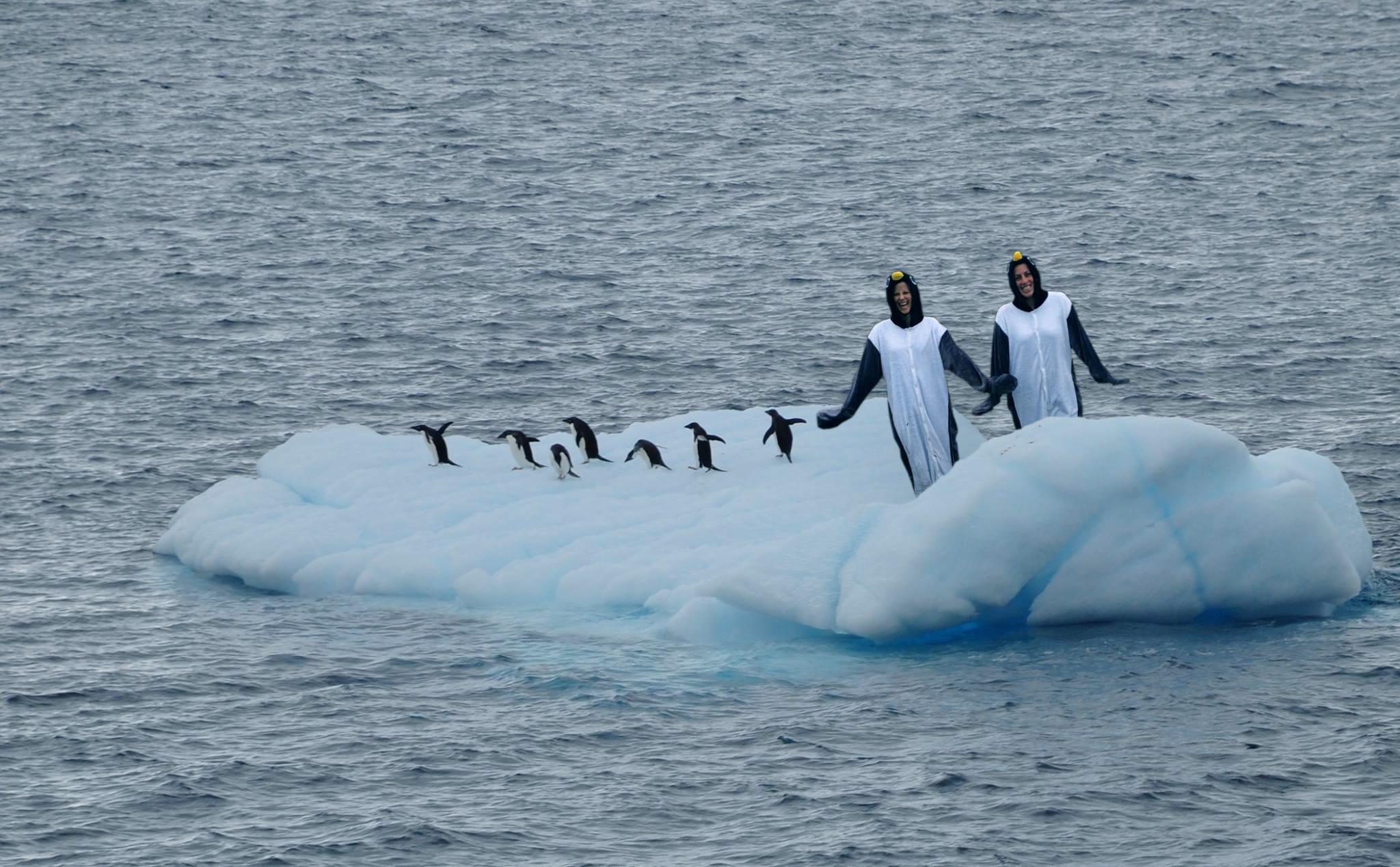 Penguin onesie Antarctica