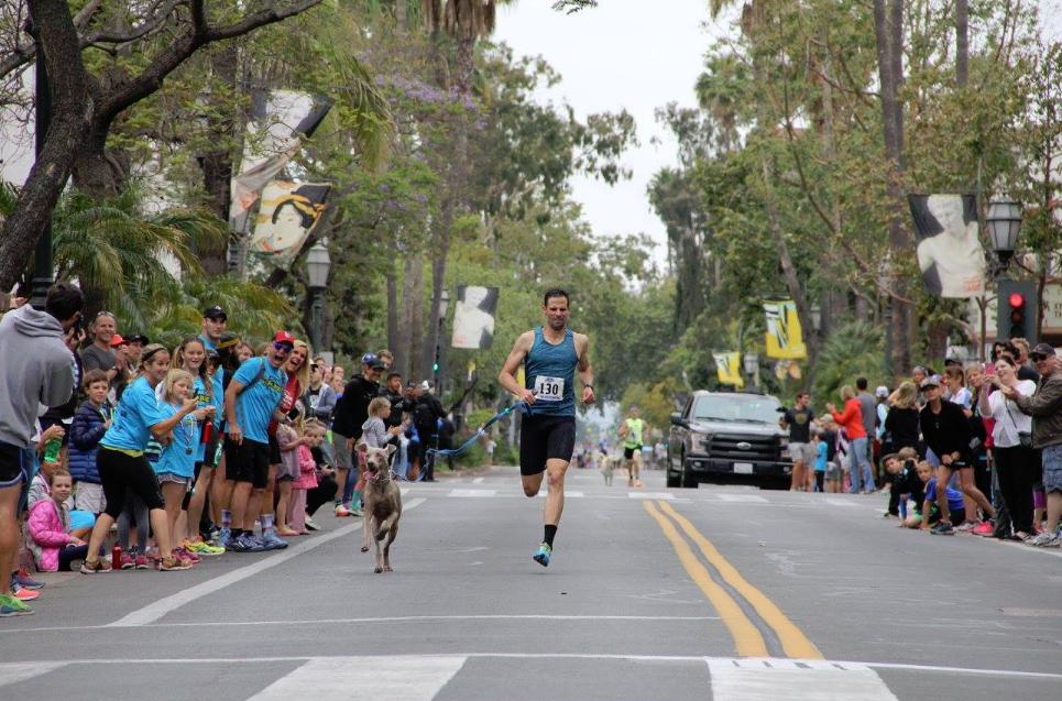 Dog Mile