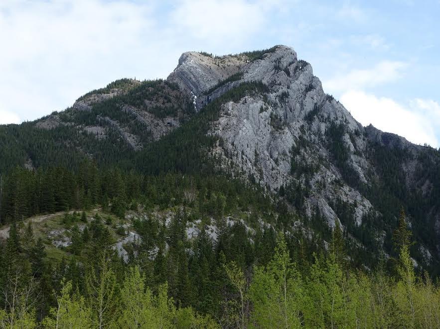 heart-mountain
