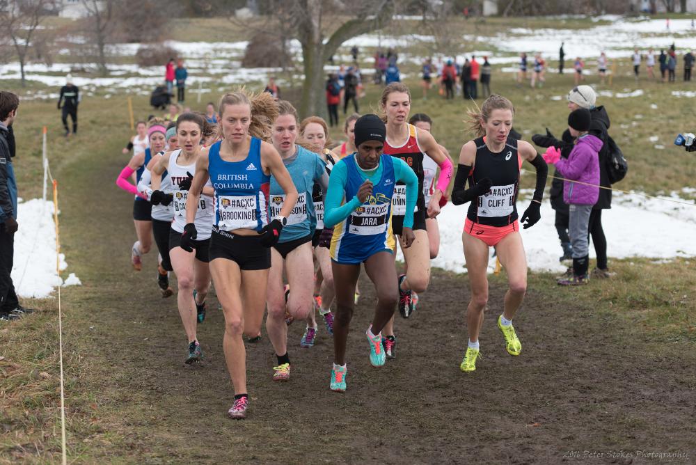 IAAF World Cross-Country Championships