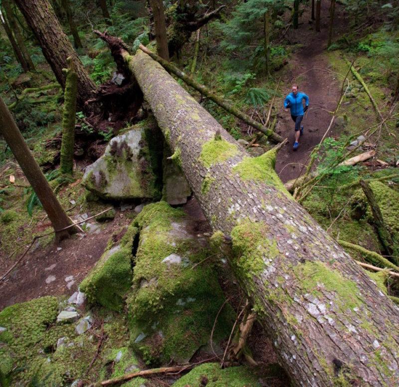 Empire Trail