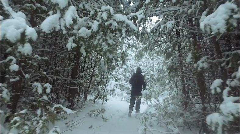 Bruce Trail Running
